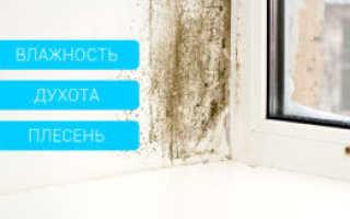 Что нужно делать, если потеют окна в квартире