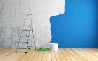 Как выбрать краску для стен в квартире — рейтинг лучших